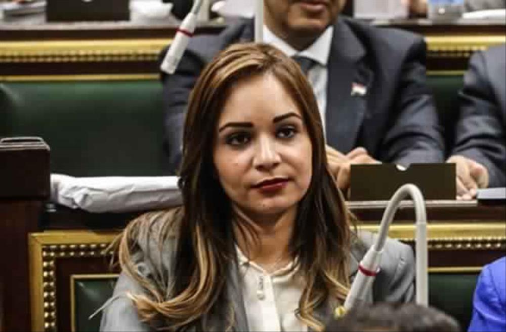 صورة برلمانية: مصر تتعرض لحرب شائعات منذ 8 سنوات