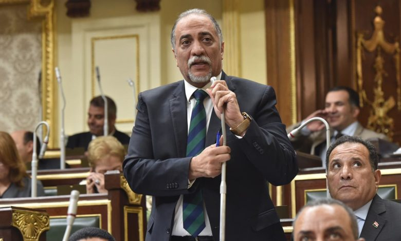 رئيس ائتلاف دعم مصر