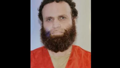 إعدام هشام عشماوي