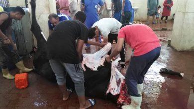 Photo of صور.. متابعة أعمال الذبح بمجزر القصير وفتحه مجانا أمام المواطنين