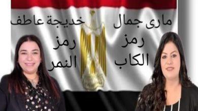 صورة أمن مصر وتطوير قطاعي الصحة والتعليم أبرز ملامح البرنامج الانتخابي لمرشحي «الحركة الوطنية» بالإسماعيلية