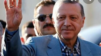 صورة محمد الدين : أردوغان يحاول أن يروح بأنه يدافع عن الدين الاسلامى