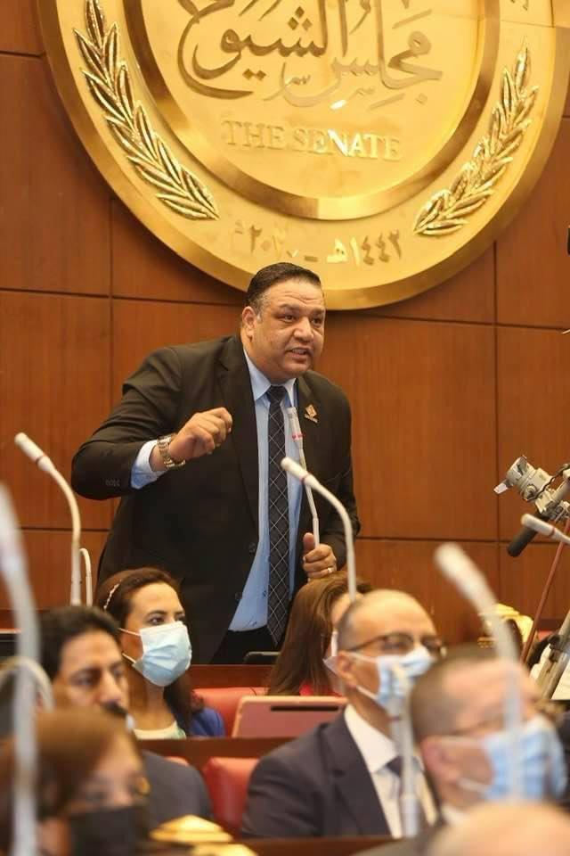 النائب محمد عزمي عضو مجلس الشيوخ عن حزب الحركة الوطنية المصرية
