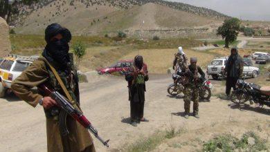مقاتلو طالبان يحمون القواعد الامريكية ويستهدفون الشعب الافغاني