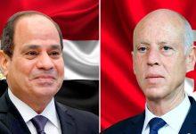 الرئيس التونسي يشيد بجهود مصر في ليبيا وسد النهضة