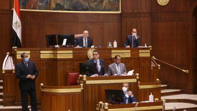«عبد الرازق» يرفع اعمال الجلسة العامة لـ«الشيوخ»